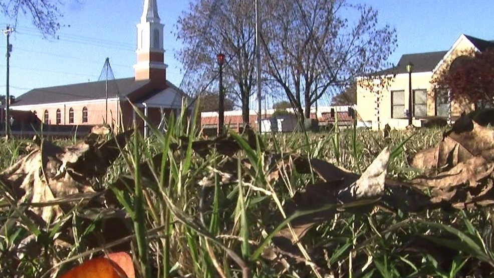 Lawn care businesses could force county to dump free program